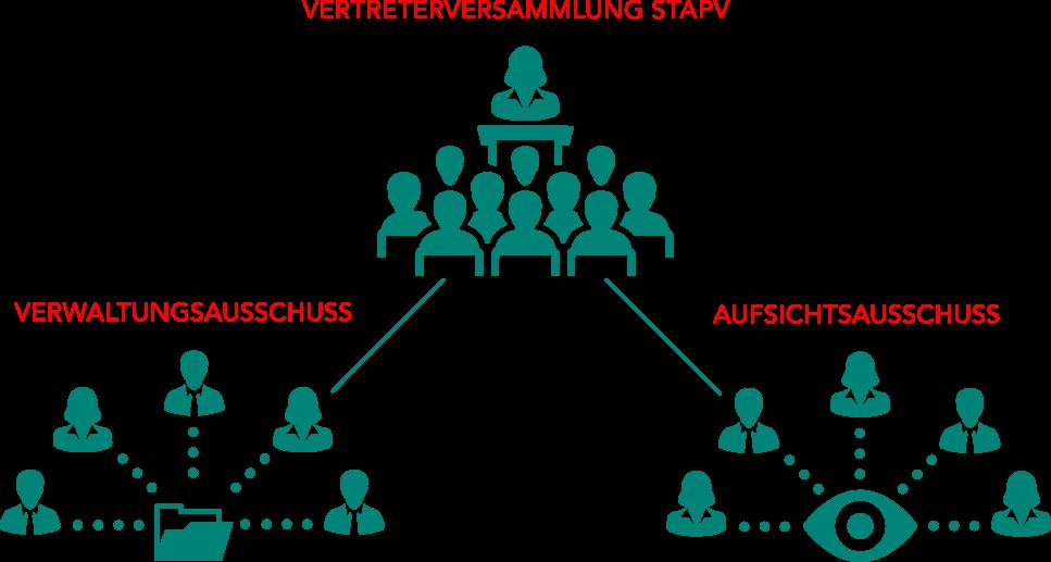 STApV Organisation